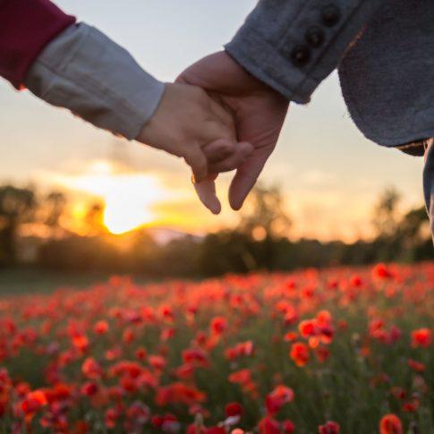 sentirsi, camminare insieme, noi, engagement, rosso, natura, papaveri, stringersi