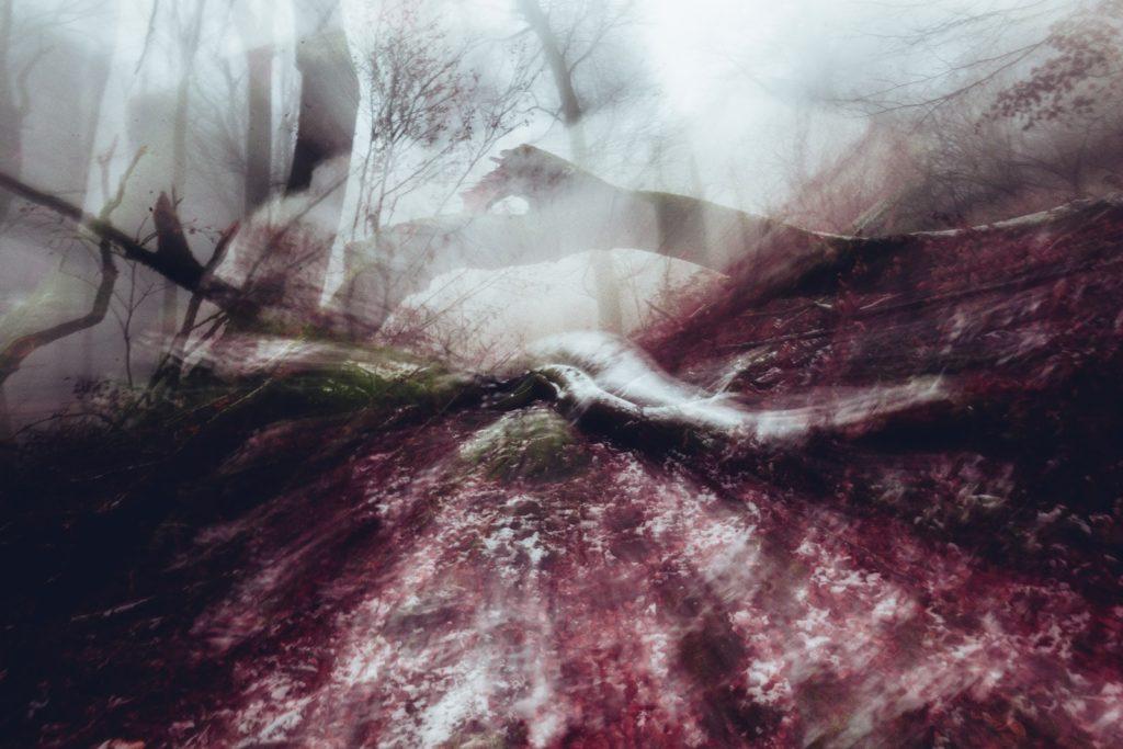 Yggdrasill e i 9 mondi, fotografia, mostra fotografica, progetto fotografico, sorianoimmagine2019, fototempismo, bifrost, via tremula, project, faggeta vetusta del monte cimino, lago trasimeno, civita castellana, soriano nel cimino, fotografia emozionale, mosso creativo, progetto bifrost, bifrost tecnica fotografica, midgard, luca storri fotografo, fotografo della tuscia, fotografo tuscia, fotografo fabrica di roma, fabrica di roma, fotografo di reportage, fotografo creativo, muspellheimr