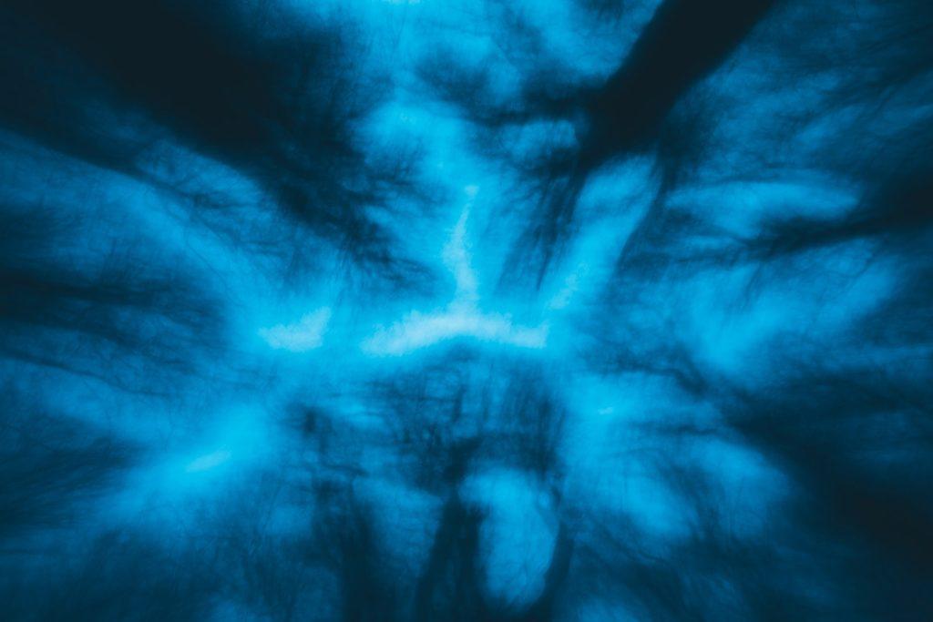 Yggdrasill e i 9 mondi, fotografia, mostra fotografica, progetto fotografico, sorianoimmagine2019, fototempismo, bifrost, via tremula, project, faggeta vetusta del monte cimino, lago trasimeno, civita castellana, soriano nel cimino, fotografia emozionale, mosso creativo, progetto bifrost, bifrost tecnica fotografica, midgard, luca storri fotografo, fotografo della tuscia, fotografo tuscia, fotografo fabrica di roma, fabrica di roma, fotografo di reportage, fotografo creativo, hel